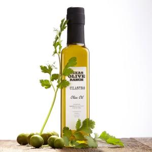 cilantro_olive_oil